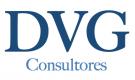 DVG Consultores